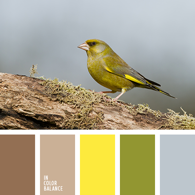 paleta-de-colores-2122