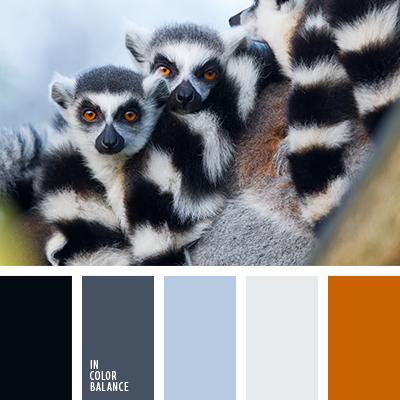 paleta-de-colores-2123