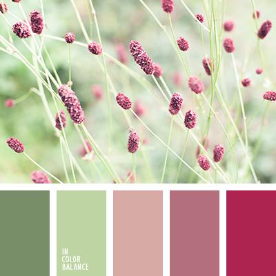 paleta-de-colores-2124