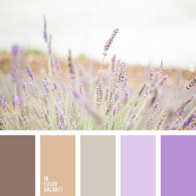 paleta-de-colores-2131