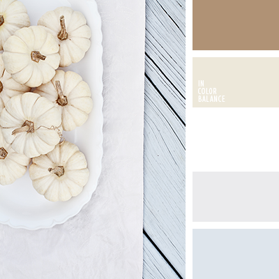 paleta-de-colores-2143