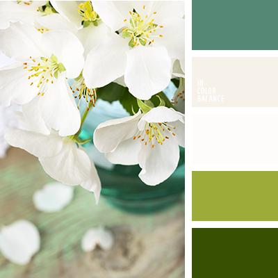 paleta-de-colores-2151