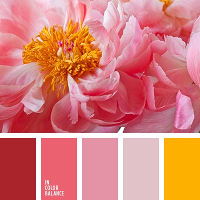 paleta-de-colores-2156