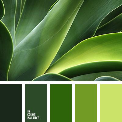 paleta-de-colores-2158