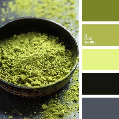 paleta-de-colores-2164