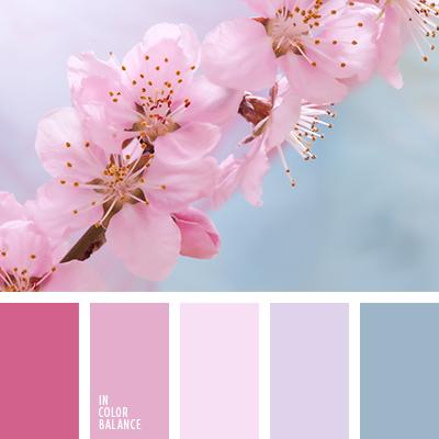 paleta-de-colores-2175