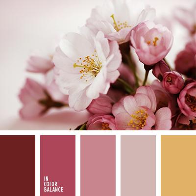 paleta-de-colores-2181