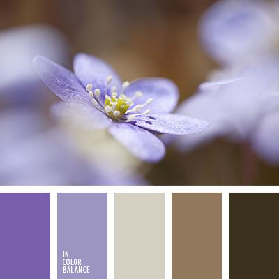 paleta-de-colores-2184