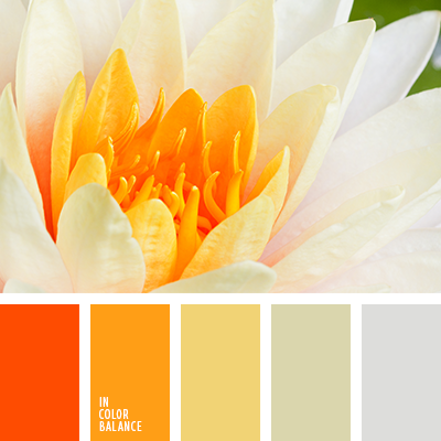 paleta-de-colores-2185