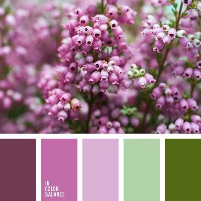 paleta-de-colores-2188