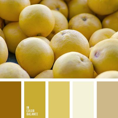 paleta-de-colores-2191