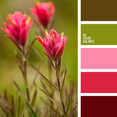 paleta-de-colores-2195