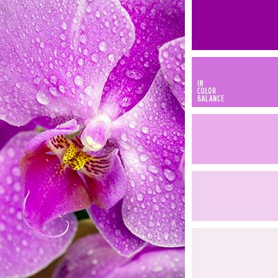paleta-de-colores-2204