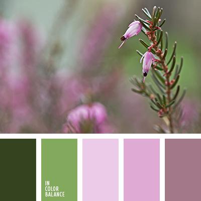 paleta-de-colores-2207