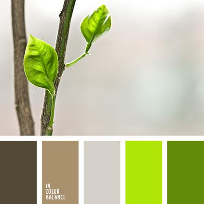 paleta-de-colores-2211