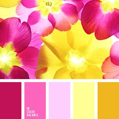 paleta-de-colores-2215