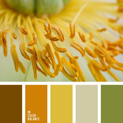 paleta-de-colores-2218