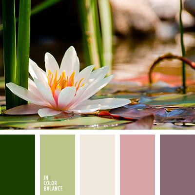 paleta-de-colores-2231