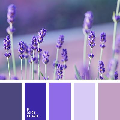 paleta-de-colores-2234