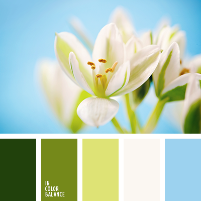 paleta-de-colores-2238