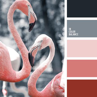 paleta-de-colores-2248