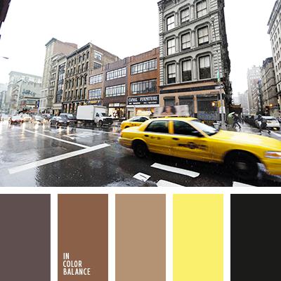 paleta-de-colores-2251