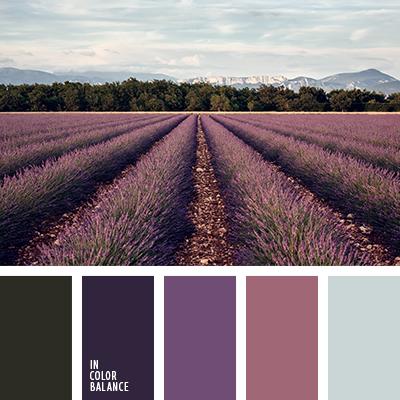 paleta-de-colores-2254