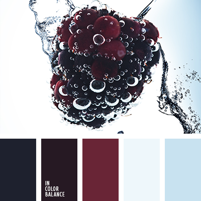 paleta-de-colores-2259