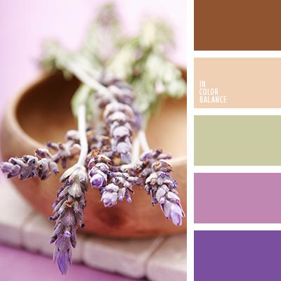 paleta-de-colores-2261