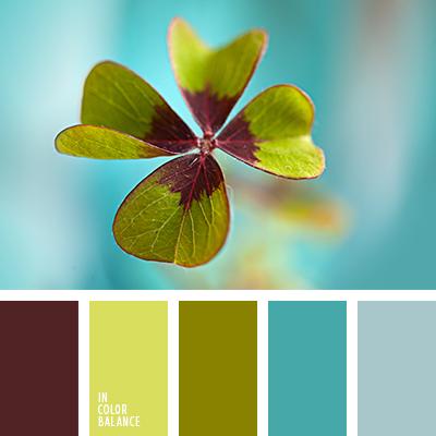 paleta-de-colores-2273