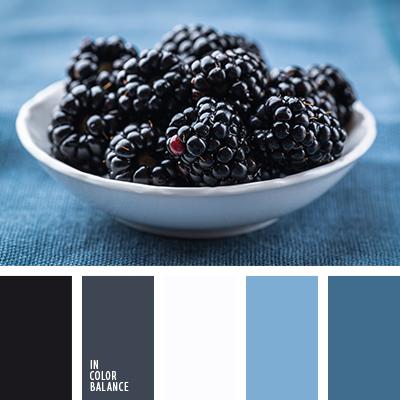 paleta-de-colores-2283