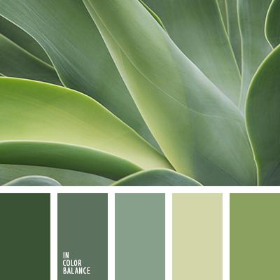 paleta-de-colores-2289