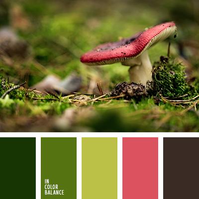 paleta-de-colores-2291