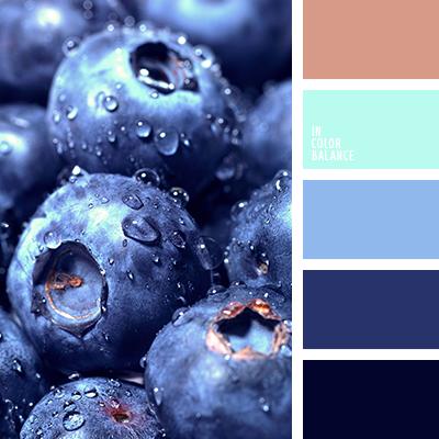 paleta-de-colores-2306
