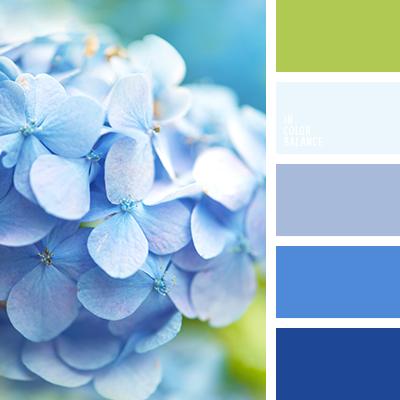 paleta-de-colores-2309
