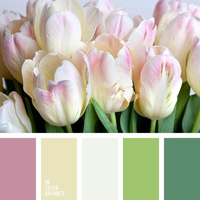 paleta-de-colores-2312