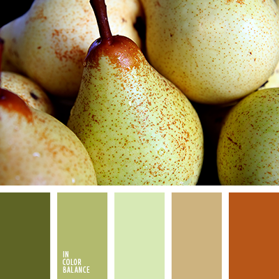 paleta-de-colores-2313