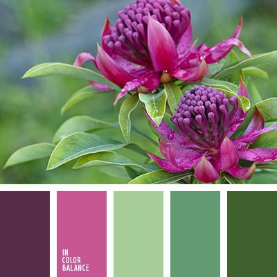 paleta-de-colores-2314