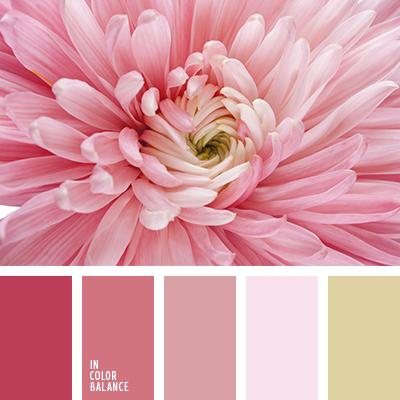 paleta-de-colores-2317