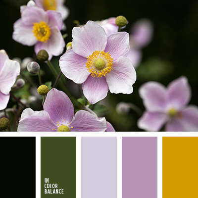paleta-de-colores-2319