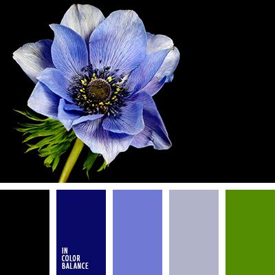 paleta-de-colores-2325