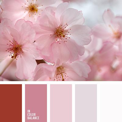 paleta-de-colores-2333