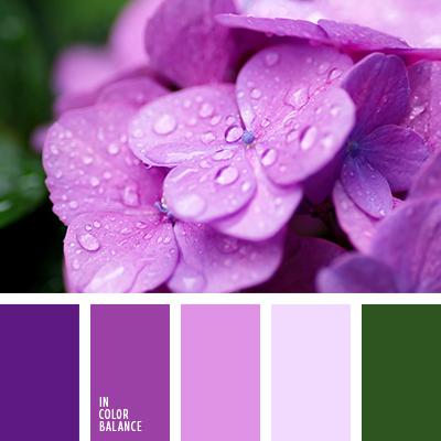 paleta-de-colores-2339