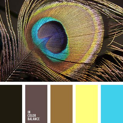 paleta-de-colores-2340