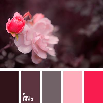 paleta-de-colores-2341