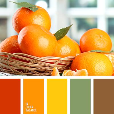 paleta-de-colores-2342