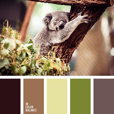paleta-de-colores-2344