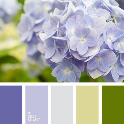 paleta-de-colores-2345