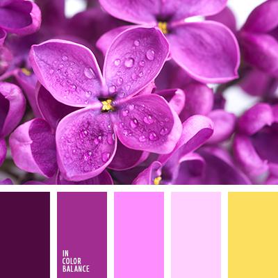 paleta-de-colores-2348