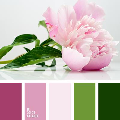 paleta-de-colores-2349